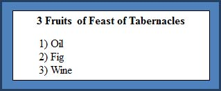 3 Fruits of the Feast of Tabernacles